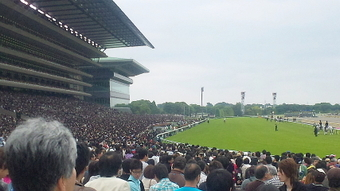 Derby02